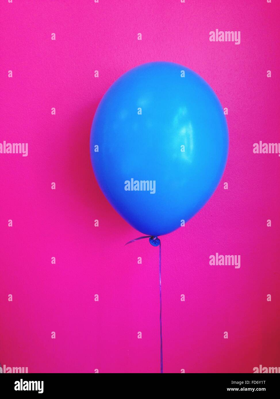Close-Up Of Balloon - Stock Image