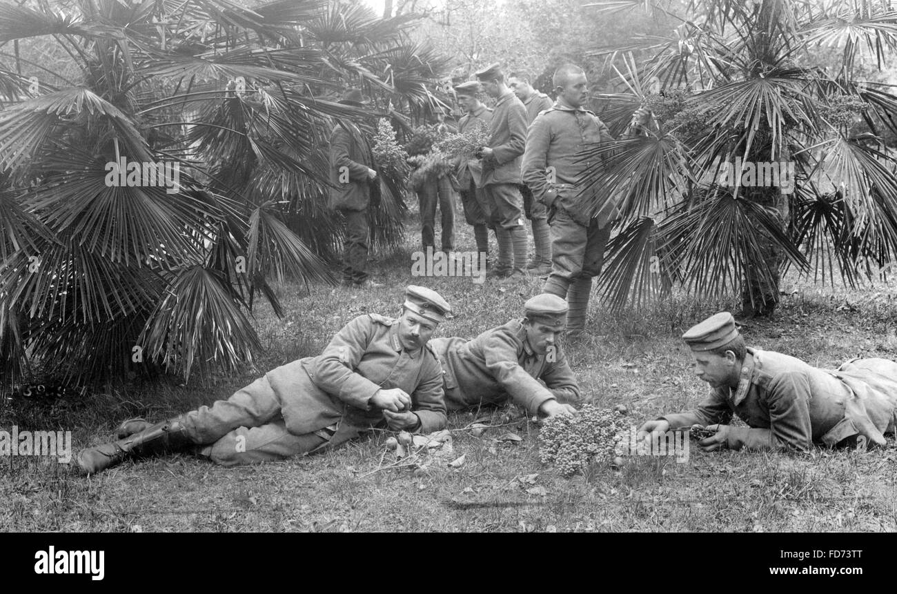 Soldiers in Pordenone, 1917 Stock Photo