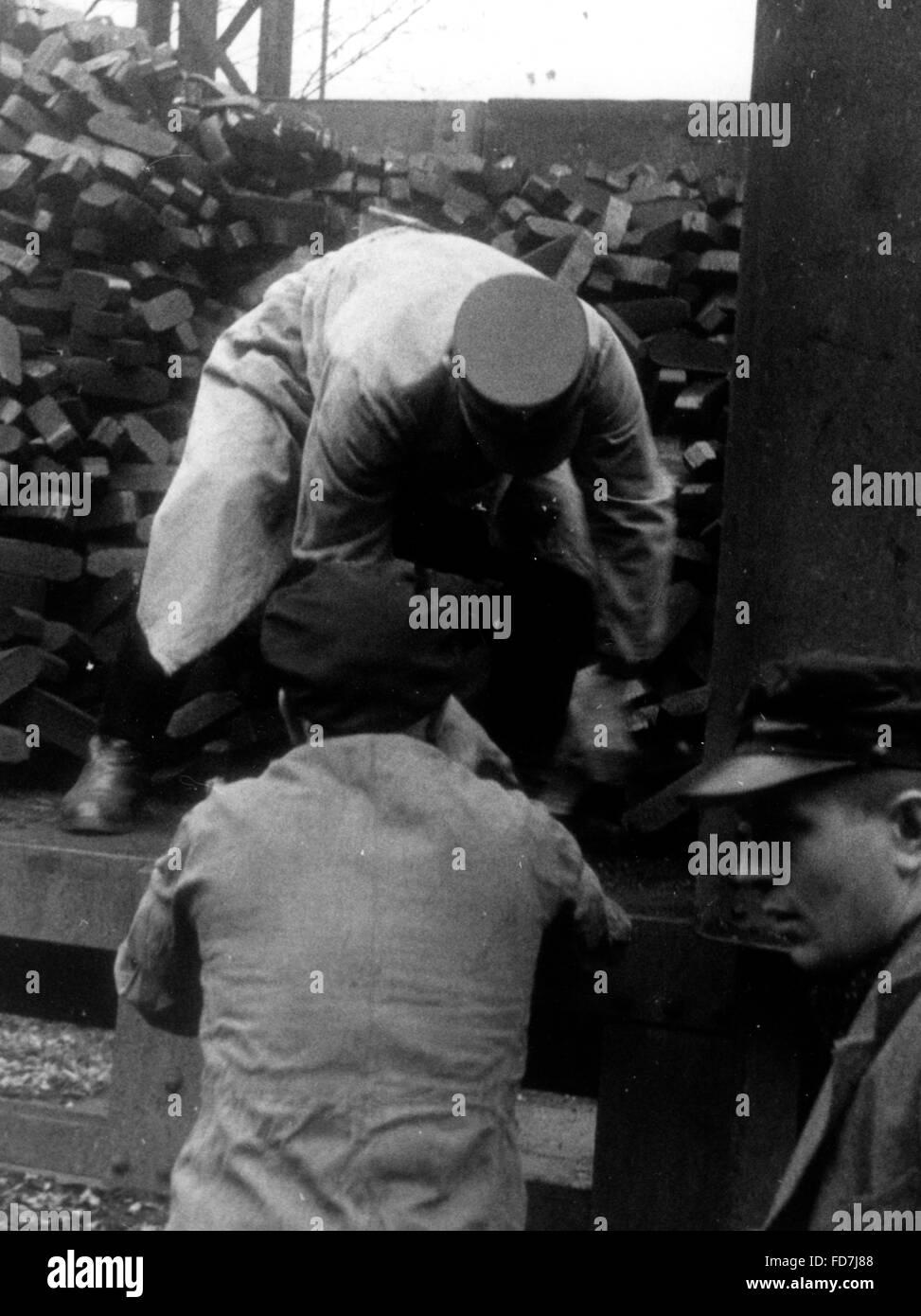 Political leader transporting coal, 1939 - Stock Image