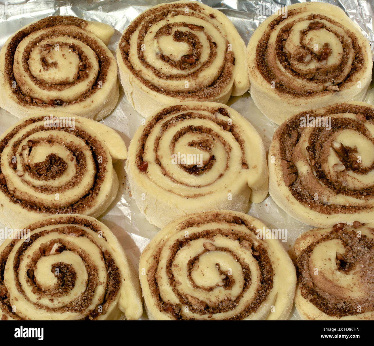 Unbaked cinnamon rolled bun with sugar and pecan nuts - Stock Image