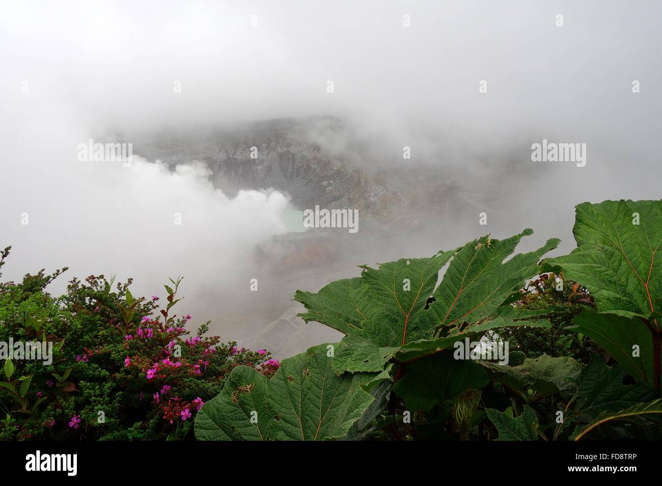Clouds and steam over Poas Volcano crater, Costa Rica. - Stock Image
