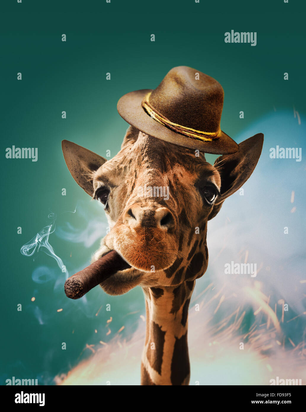 Cool giraffe with cigar and hat on turquoise background. - Stock Image
