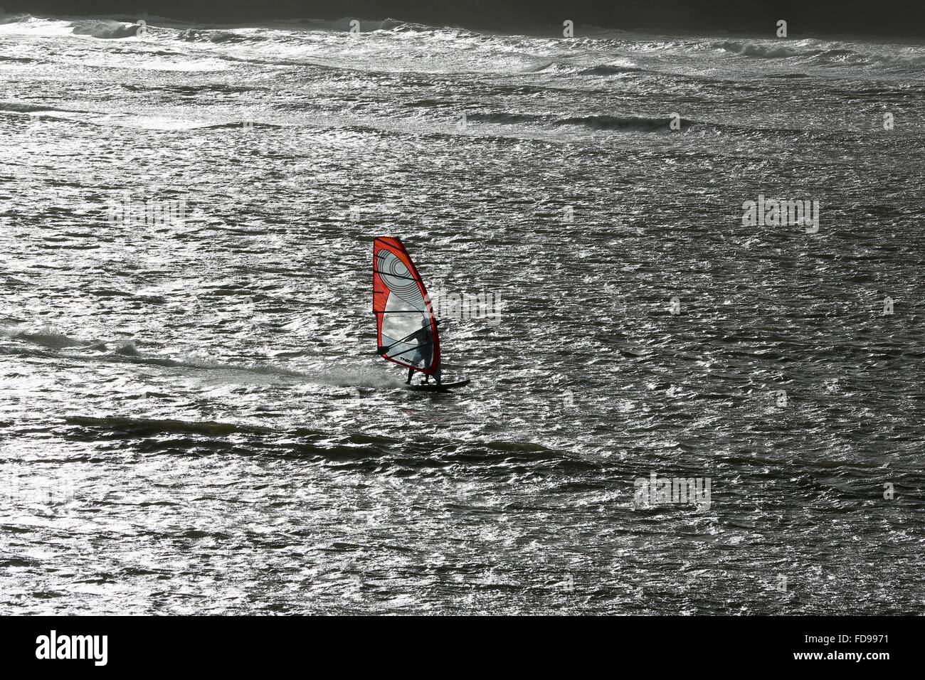 A windsurfer on the south Devon coast on a sunny winter's day. - Stock Image