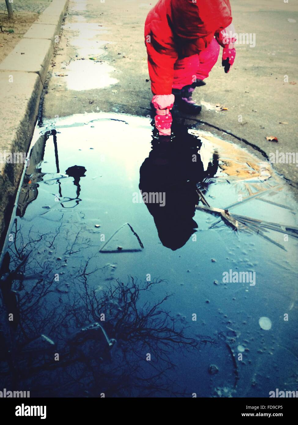 Girl Putting Hand Into Puddle - Stock Image