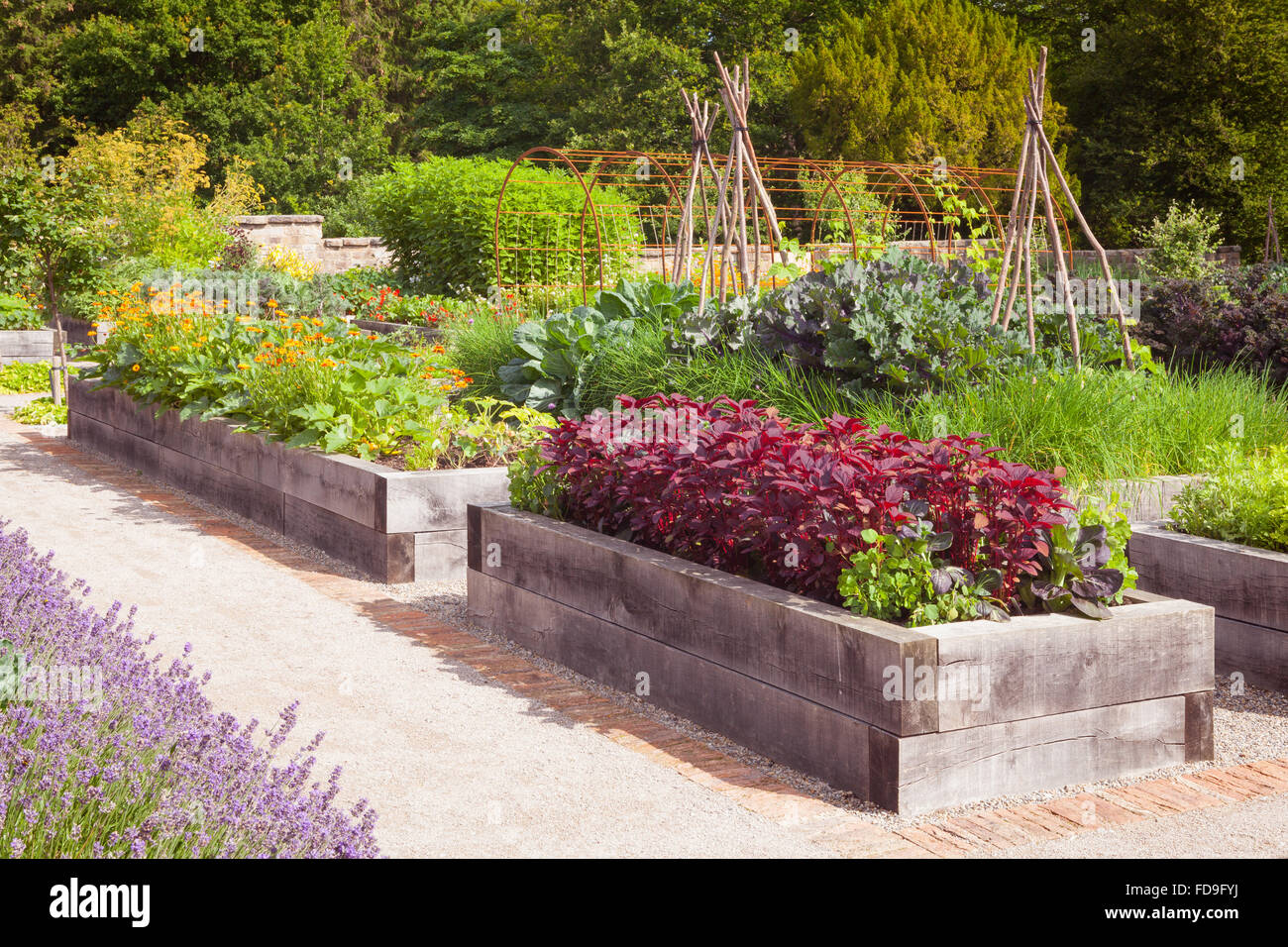 Picture of: Raised Vegetable Garden High Resolution Stock Photography And Images Alamy