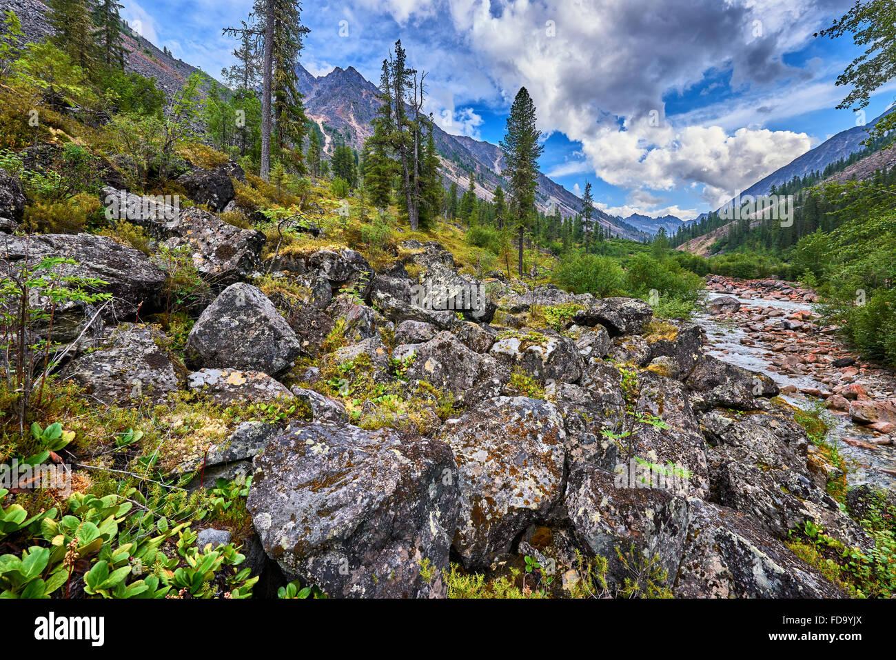 Large boulders in the mountain rare woods near the small Siberian river . Eastern Sayan . Buryatia - Stock Image