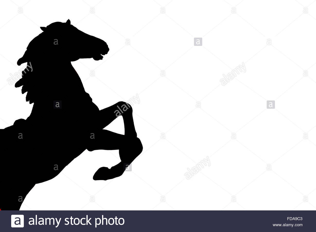 Rearing Black Horse Silhouette On White Background Digitally Created Stock Photo Alamy
