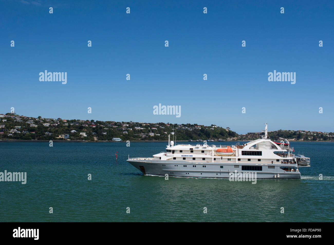 New Zealand, South Island, Dunedin, Otago Peninsula. Expedition cruise ship, Coral Discoverer. - Stock Image