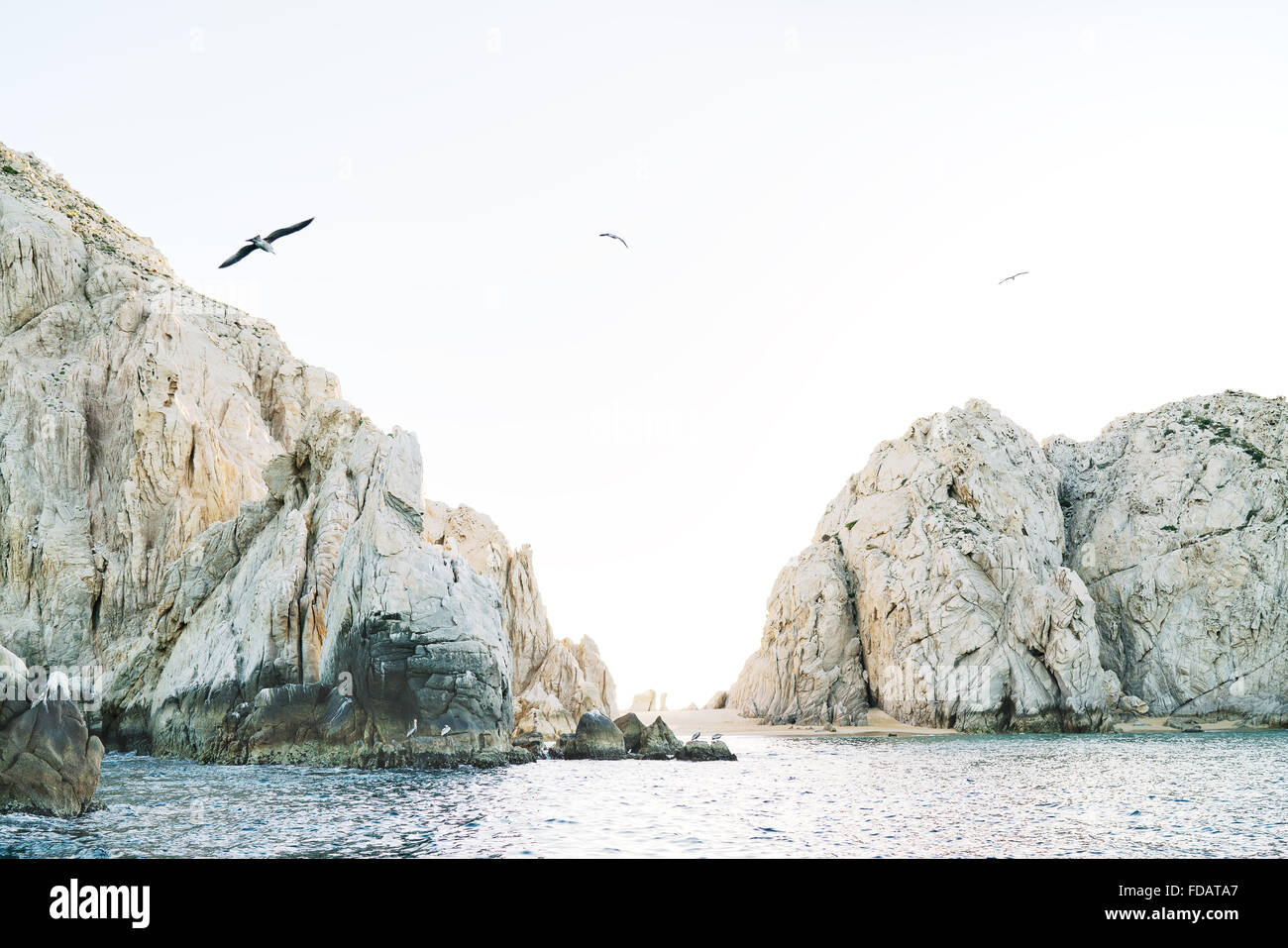 Birds flying over the Pacific Ocean and rocks of Cabo San Lucas, Baja California, Mexico - Stock Image