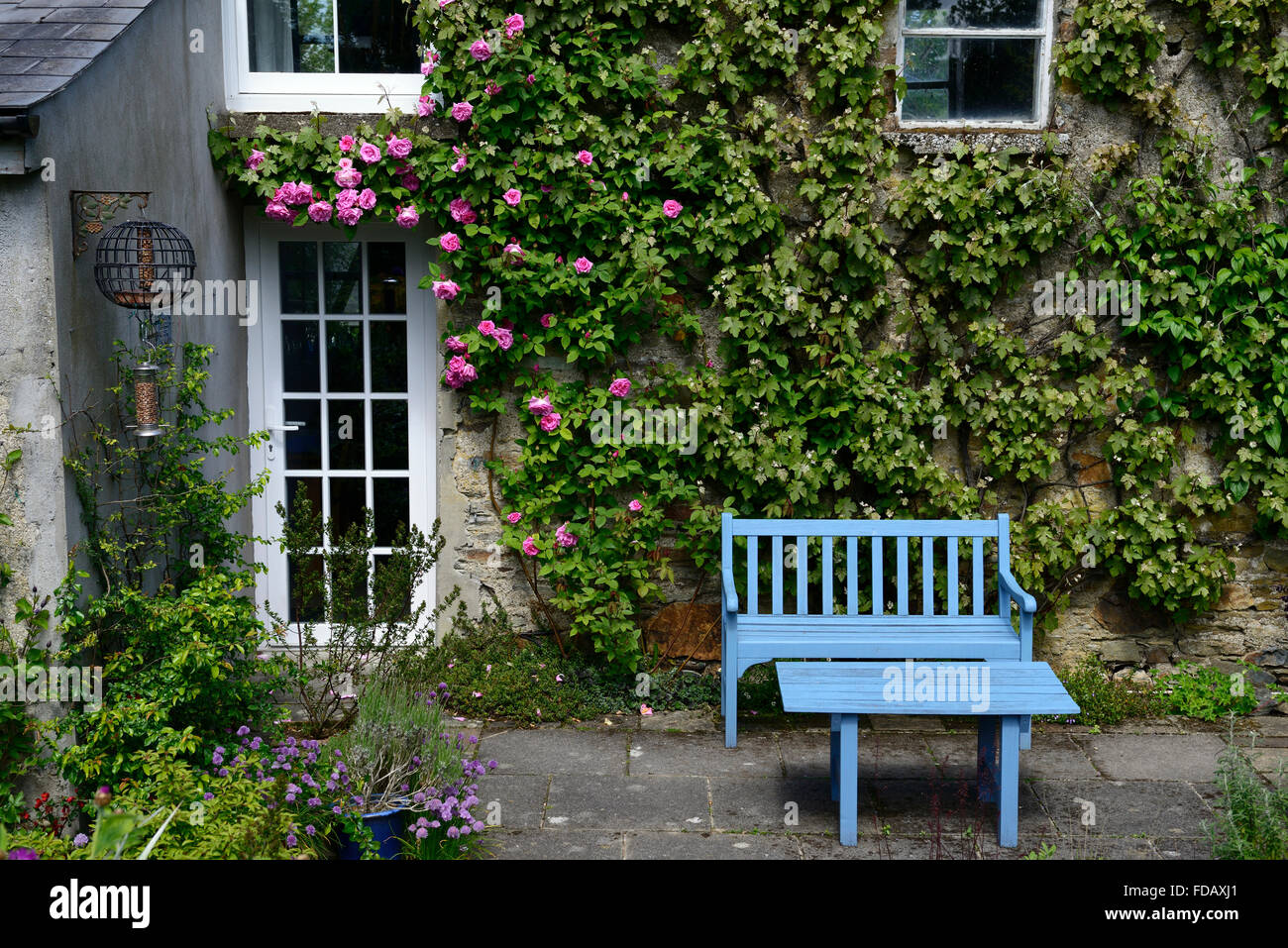 blue table seat seating bench garden patio area feature centrepiece The Bay garden Camolin Wexford RM Floral - Stock Image