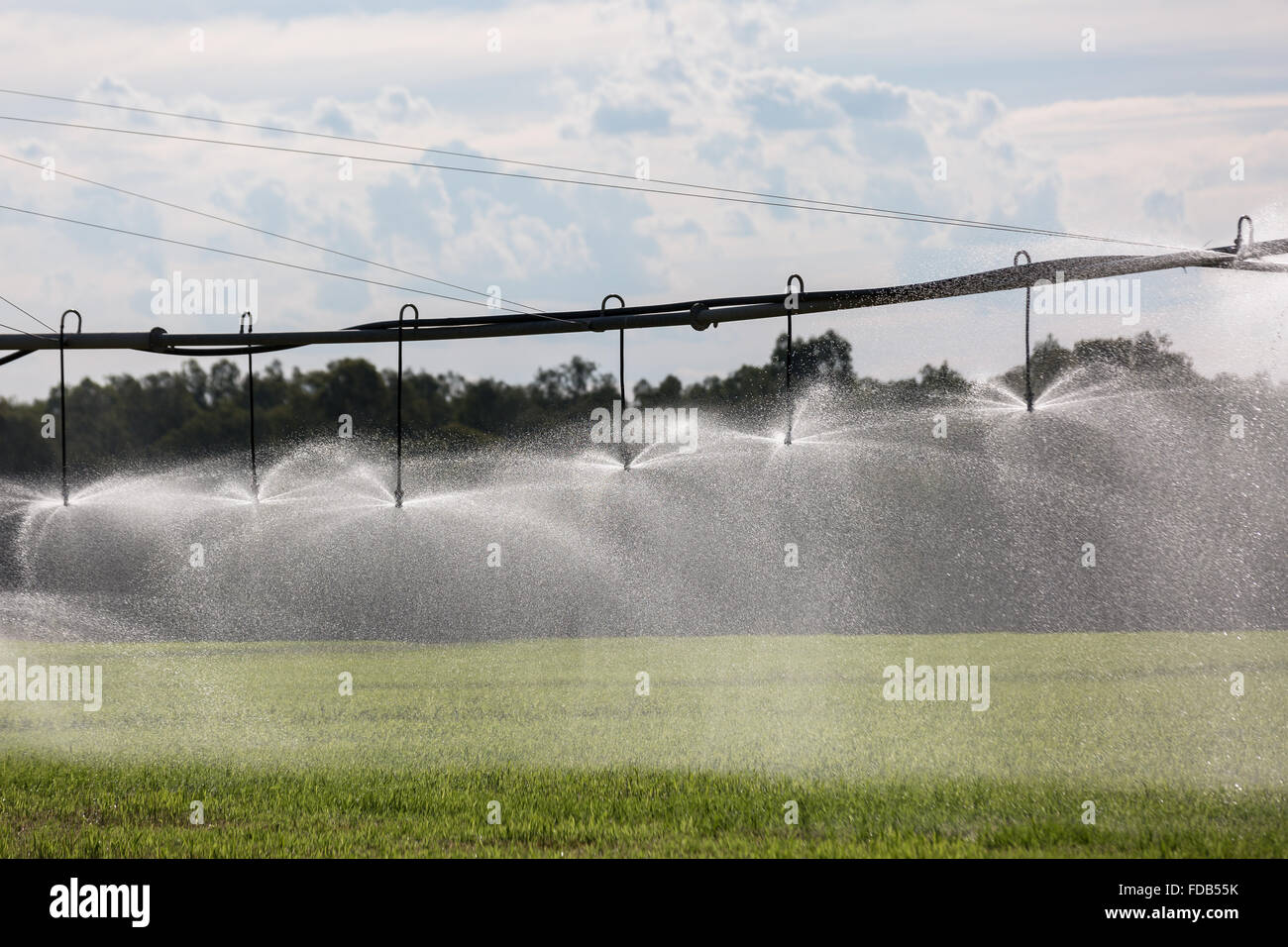 a lateral move irrigation system  sometimes called a linear move stock photo  94287919