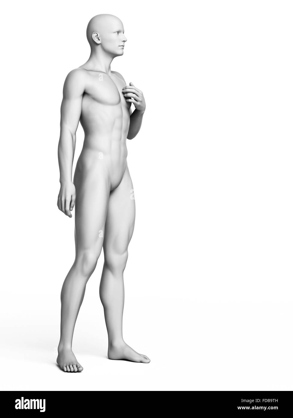 Anatomy Man Standing Illustration Black and White Stock Photos ...