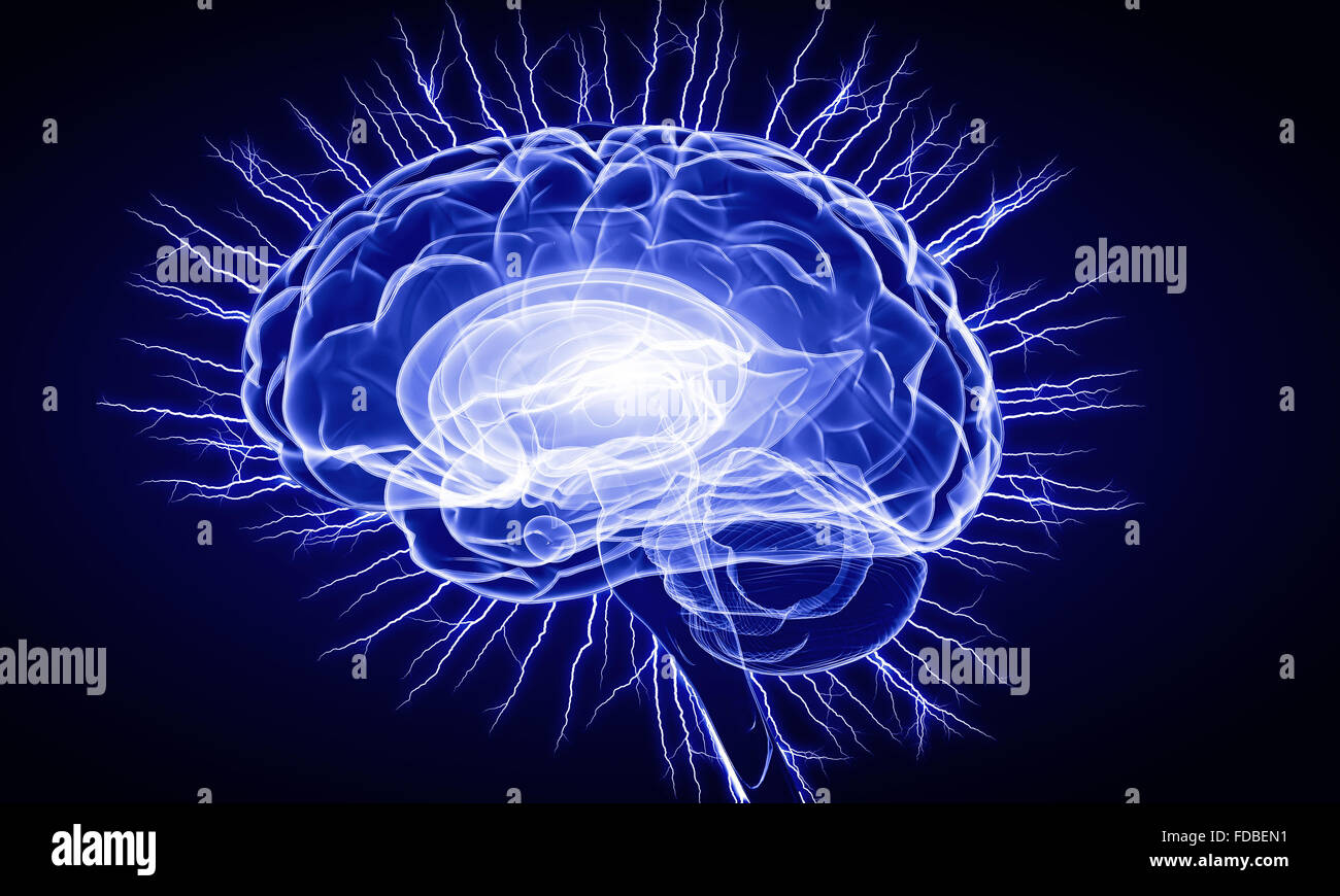 Concept of human intelligence with human brain on blue digital background - Stock Image