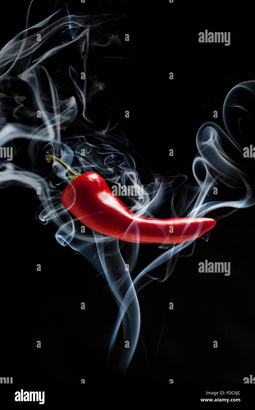 Spicy red chili isolated on a dark background with plenty of copy space - Stock Image
