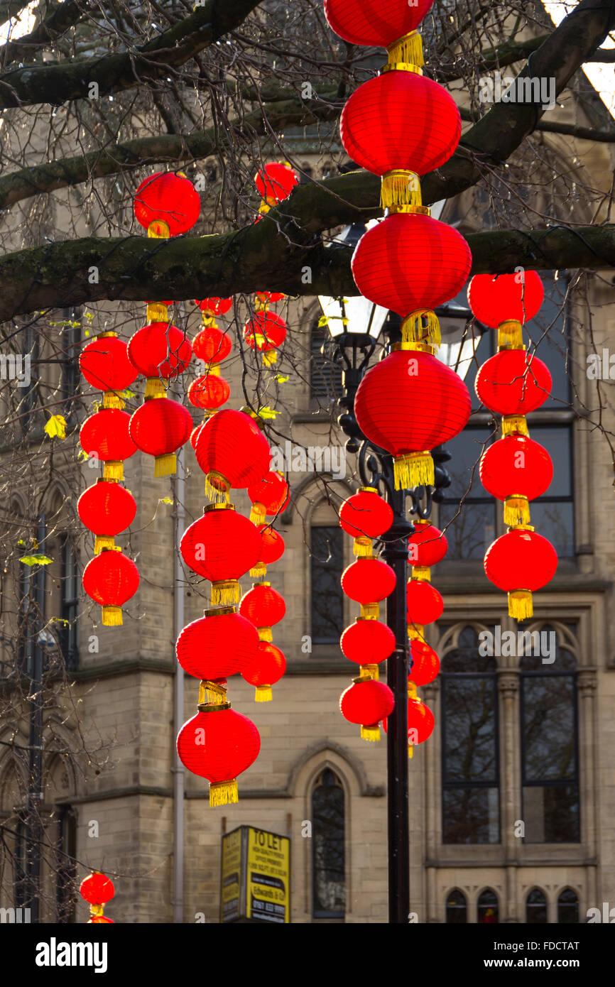 Chinese Lantern Tree Stock Photos & Chinese Lantern Tree Stock