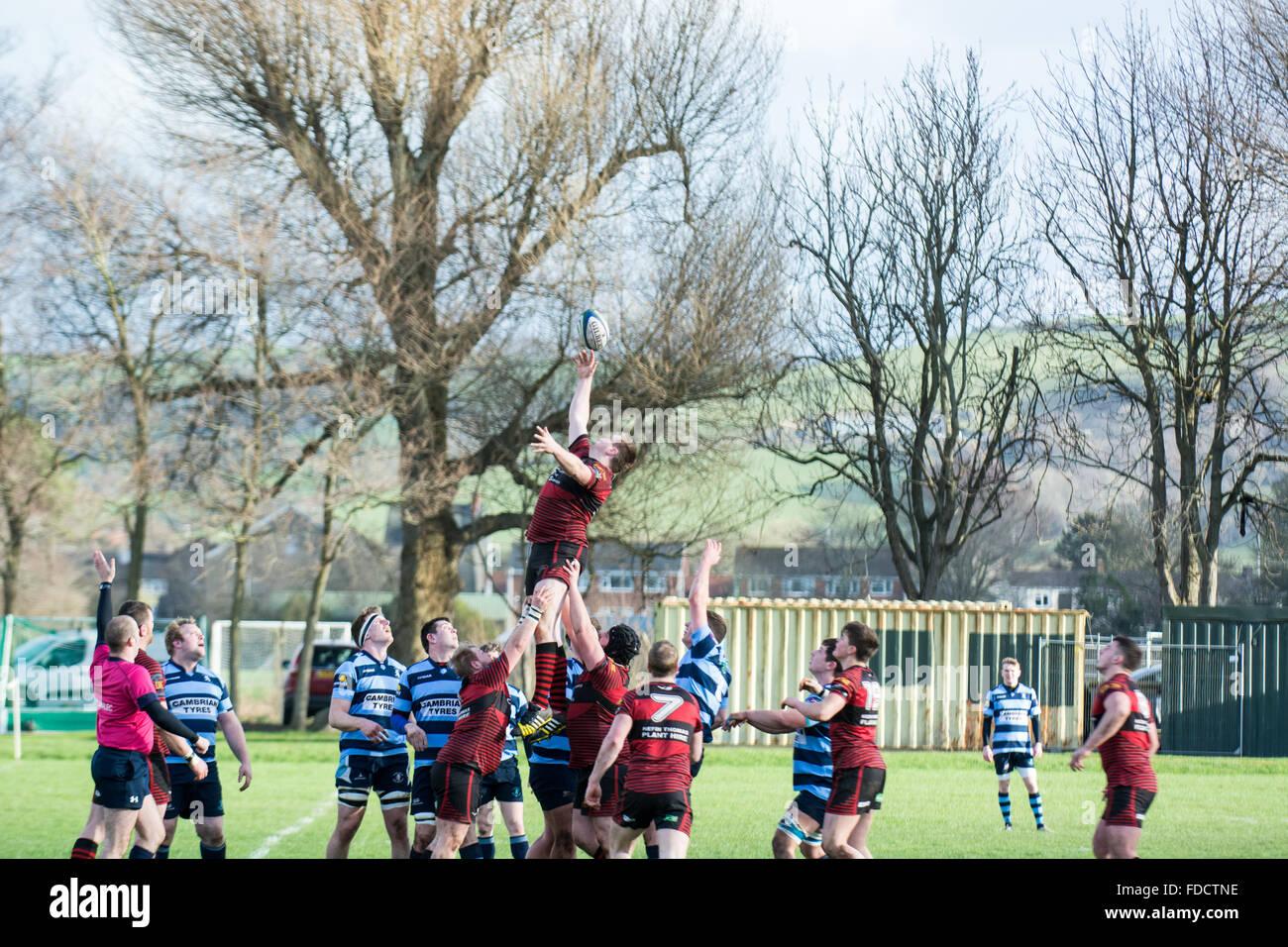 Aberystwyth, West Wales, UK 30th January 2016 Sport. Aberystwyth RFC (1st Team) vs Carmarthen Athletic RFC (1st Stock Photo