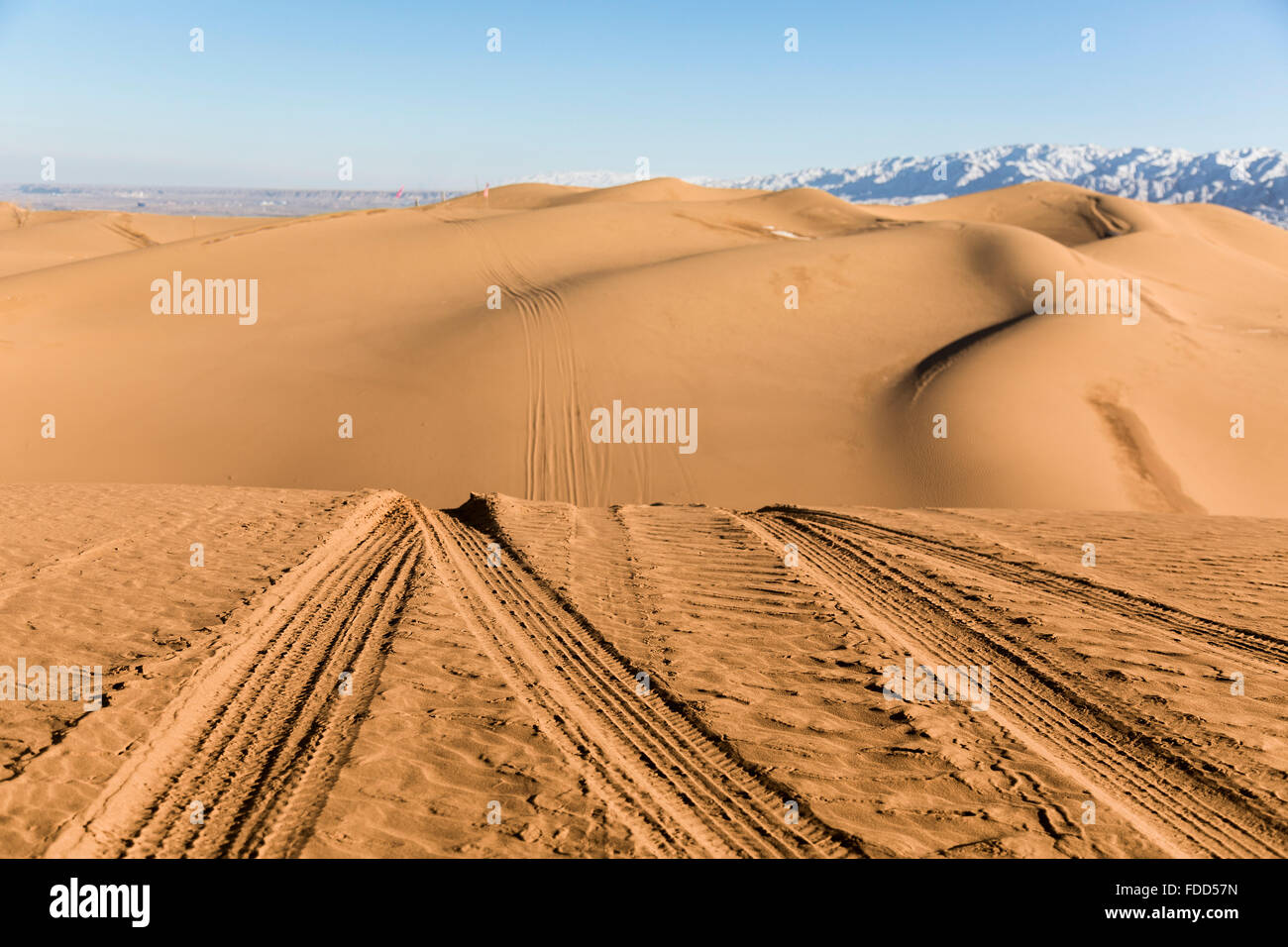 Tire tracks on the sand dunes in Shapotou National Park - Ningxia, China. - Stock Image