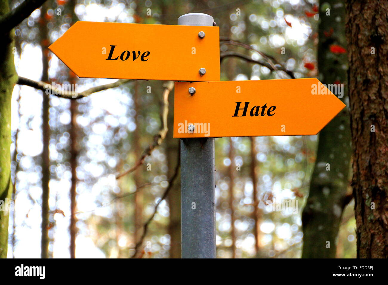 Love and Hate written on a yellow direction sign - Stock Image