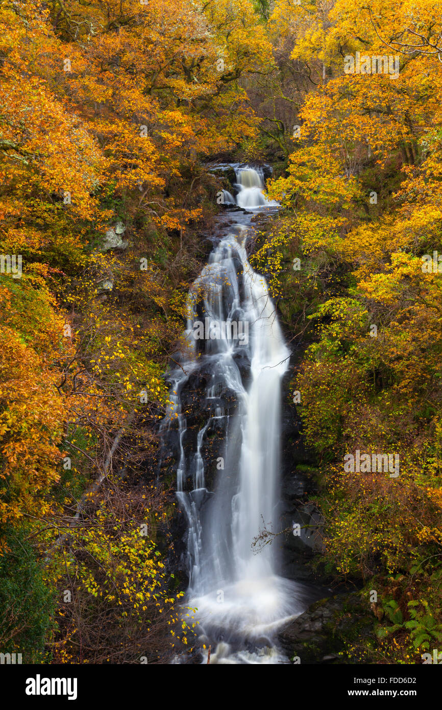Black Spout Waterfall near Pitlochry in Perthshire, - Stock Image