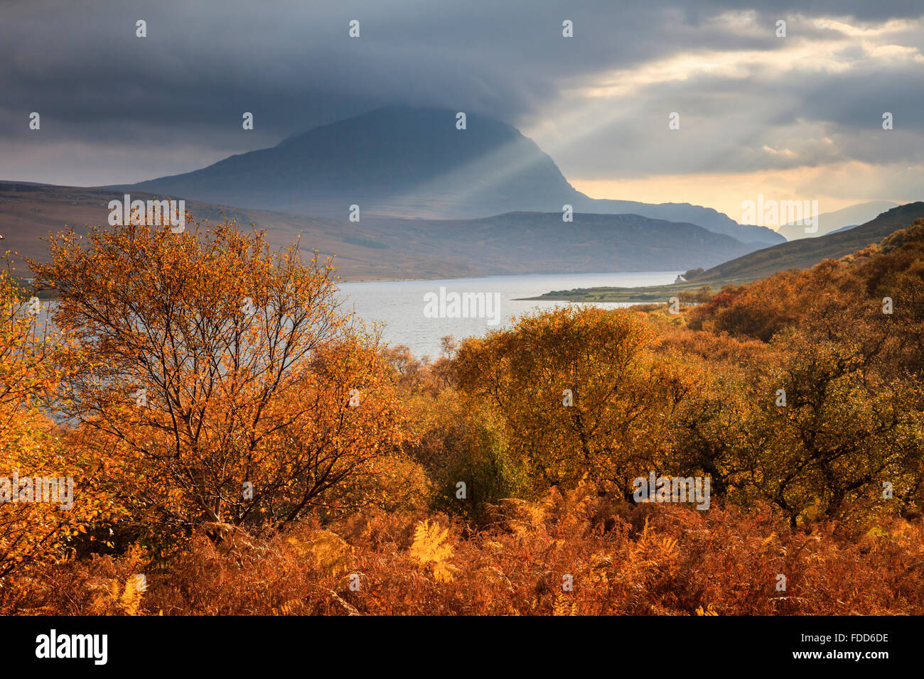Autumn colour on the Western shore of Loch Loyal in the North West Highlands of Scotland, - Stock Image