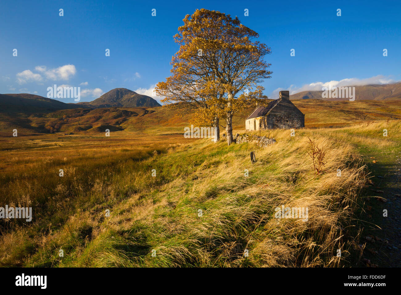 An abandoned building at Lettermore near Loyal Loyal in the North West Highlands of Cornwall, - Stock Image