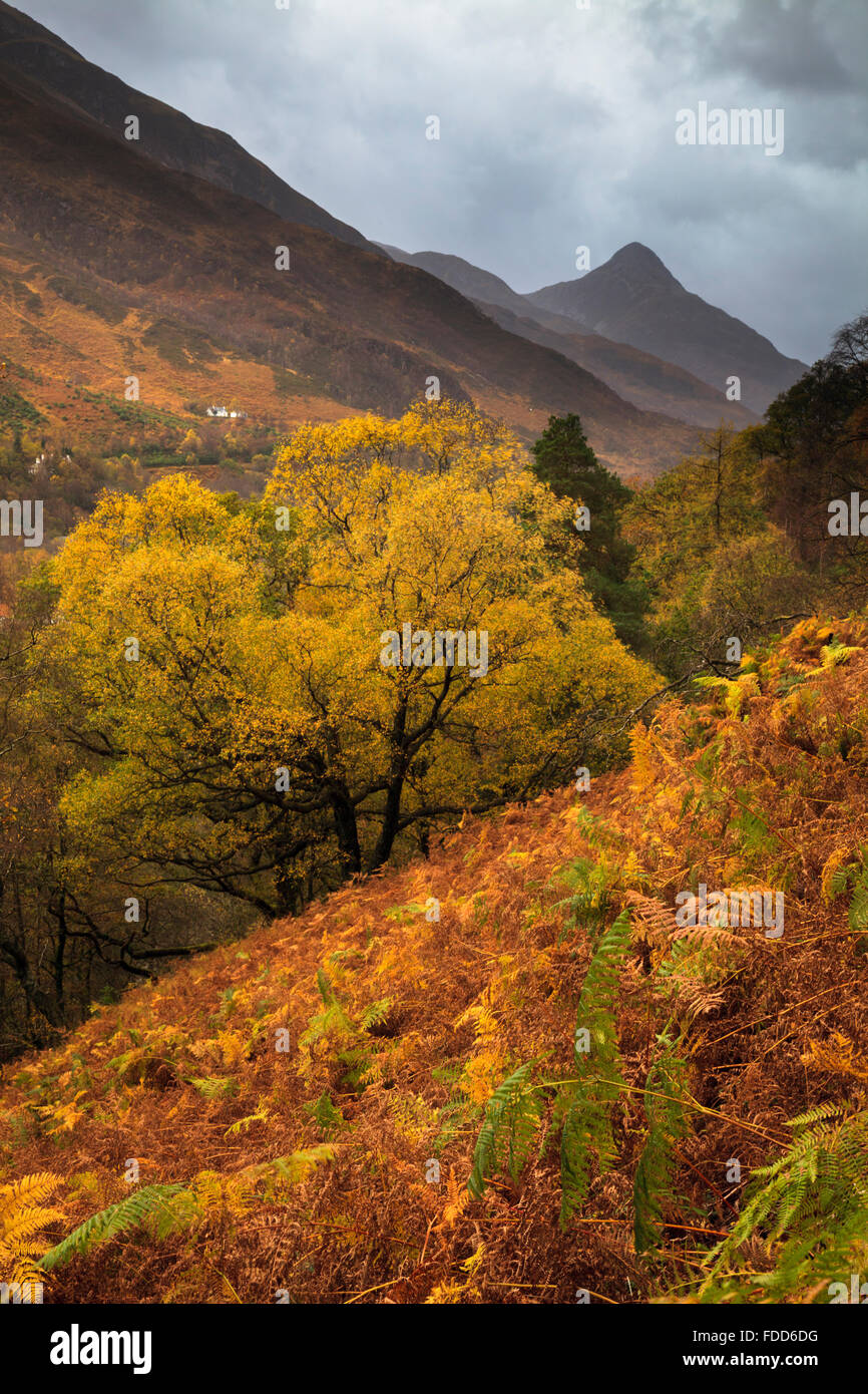 The Pap of Glencoe captured from a footpath near Grey Mare Waterfall on the northern side of Loch Leven. - Stock Image