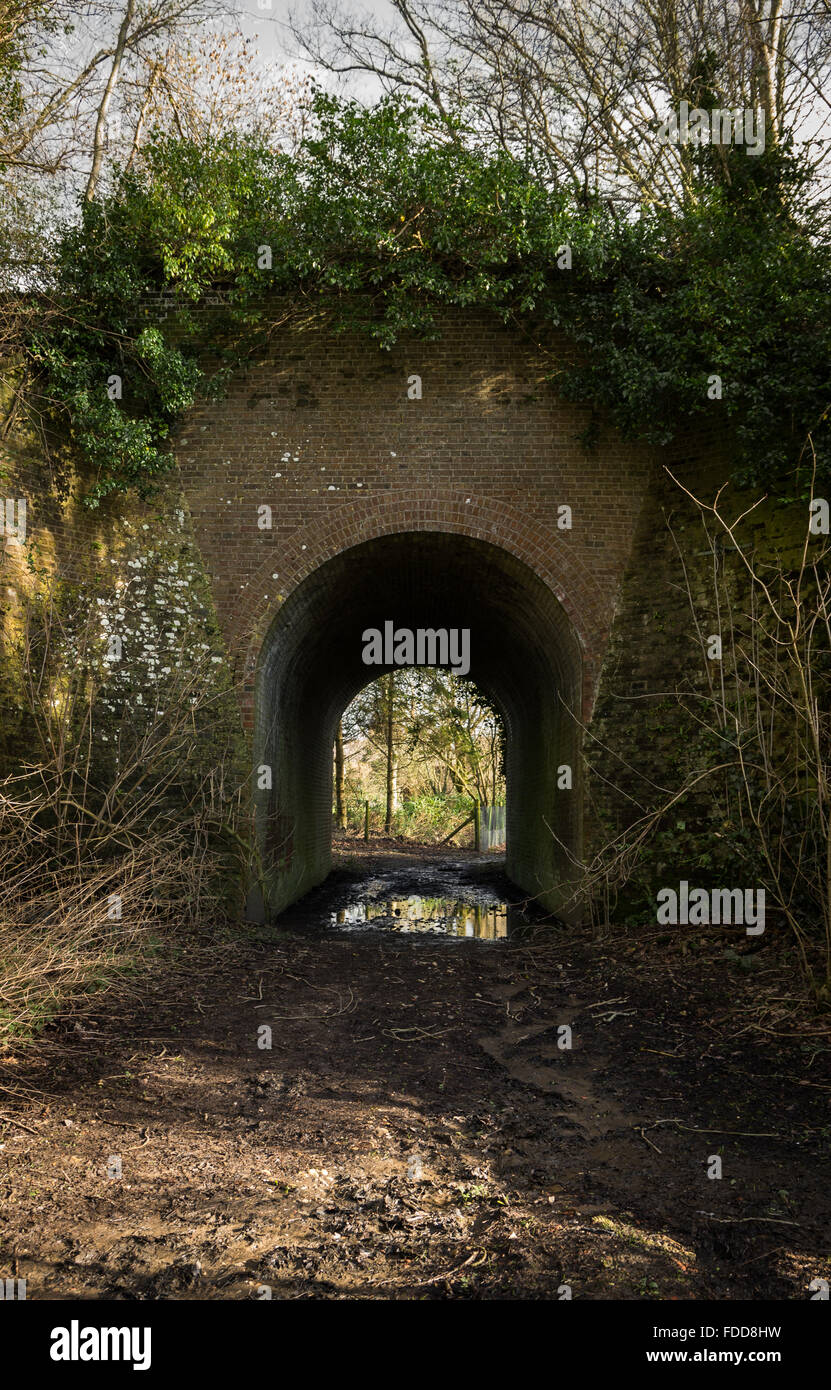 Old cattle tunnel under an old railway line in the Sussex countryside. - Stock Image