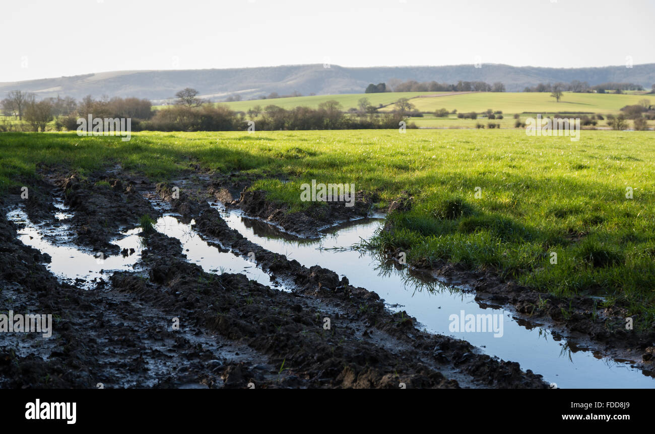 Flood water and mud in tyre tracks in a field on farmland with the south downs hills in the background. - Stock Image