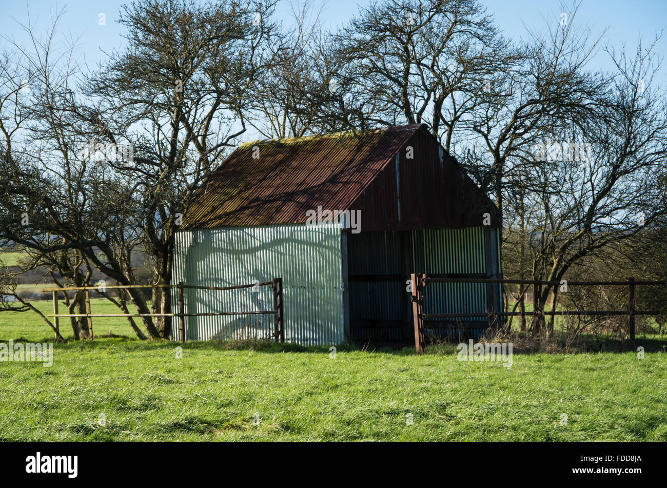 A corrugated metal shed or barn in a field surrounded by trees in the Sussex countryside in Winter, UK. - Stock Image