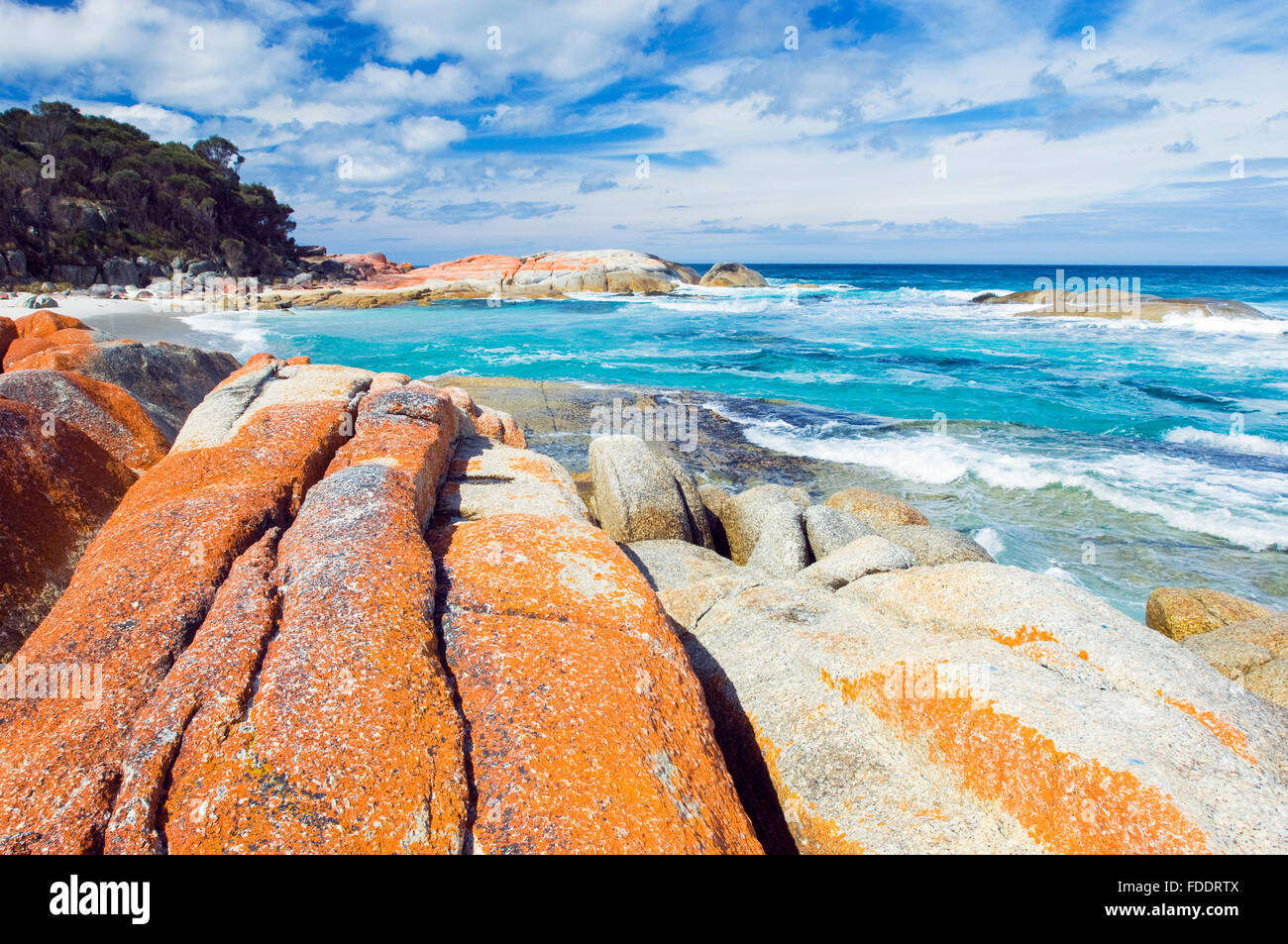 Bay of Fires, East Coast Tasmania showing rocks with orange lichens - Stock Image