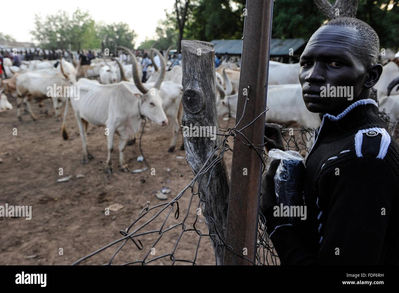 SOUTH SUDAN  Bahr al Ghazal region , Lakes State, town Rumbek, cattle market and auction of Zebu cow /  SUED-SUDAN - Stock Image