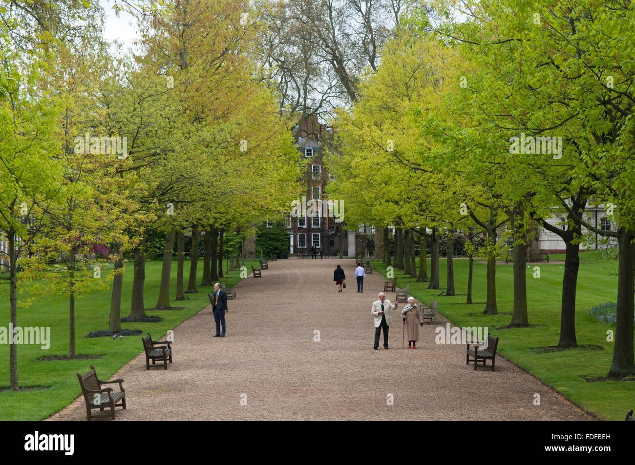 People in Gray's Inn Walks and Gardens, London, one of the four Inns of  Court of the British legal system - Stock Image