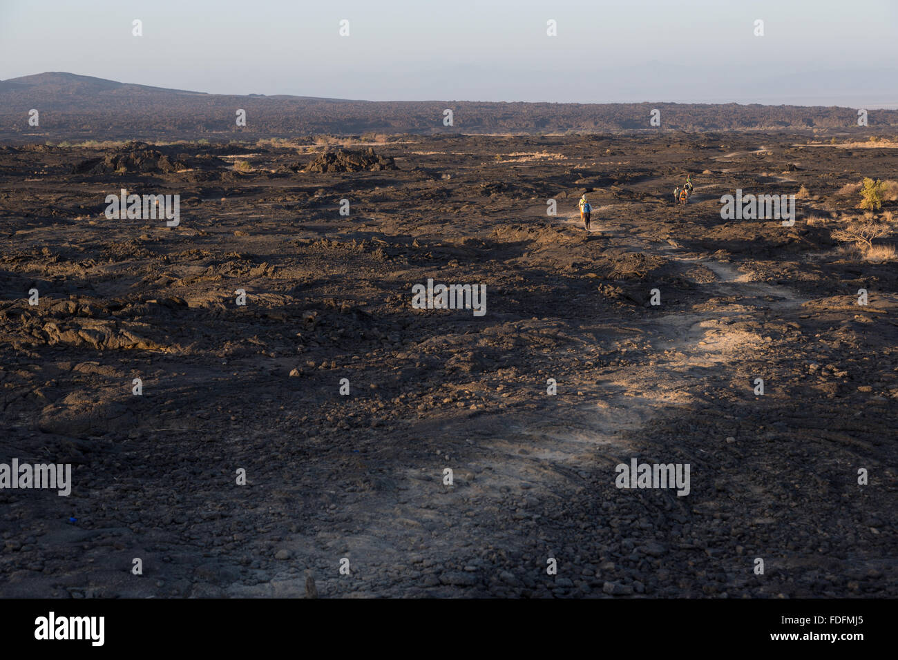 People follow a faint path through the lava fields around Erta Ale volcano in Ethiopia. Descending the volcano in - Stock Image