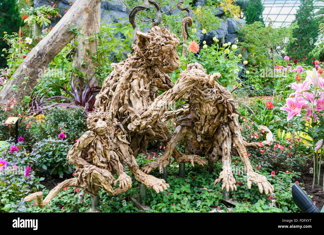 Wood pieces in the form of monkeys for the Chinese New Year of the Monkey in the Flower Dome, Gardens by the Bay, - Stock Image