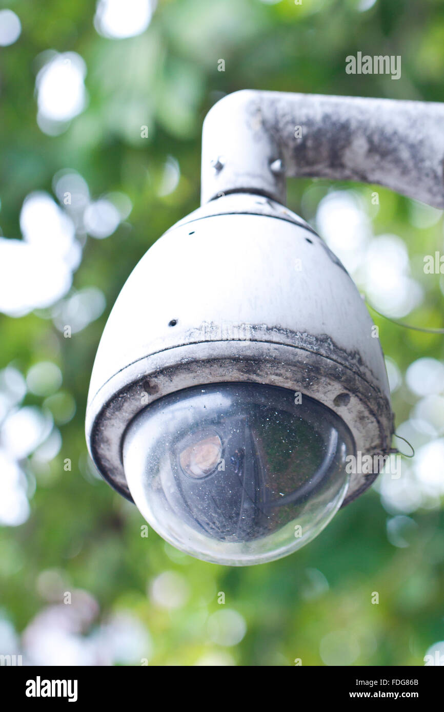 Surveillance camera (Dome CCTV camera) - Stock Image