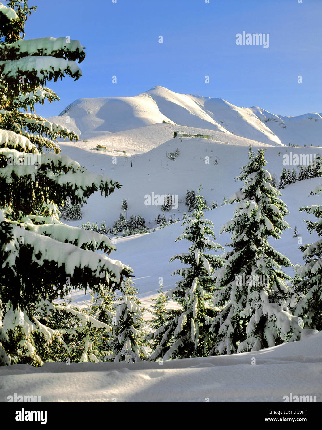Mont Joly and Mont Joux in the French Alps above Saint Gervais and Megeve from the Mont Arbois. A winter ski resort - Stock Image