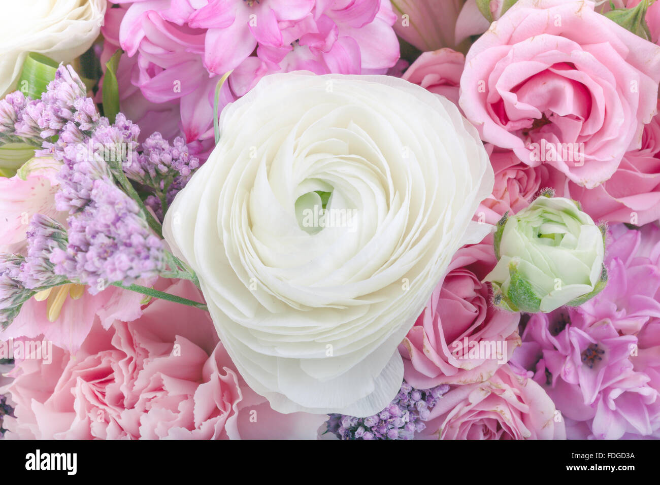Amazing flower bouquet arrangement close up in pastel colors stock amazing flower bouquet arrangement close up in pastel colors izmirmasajfo