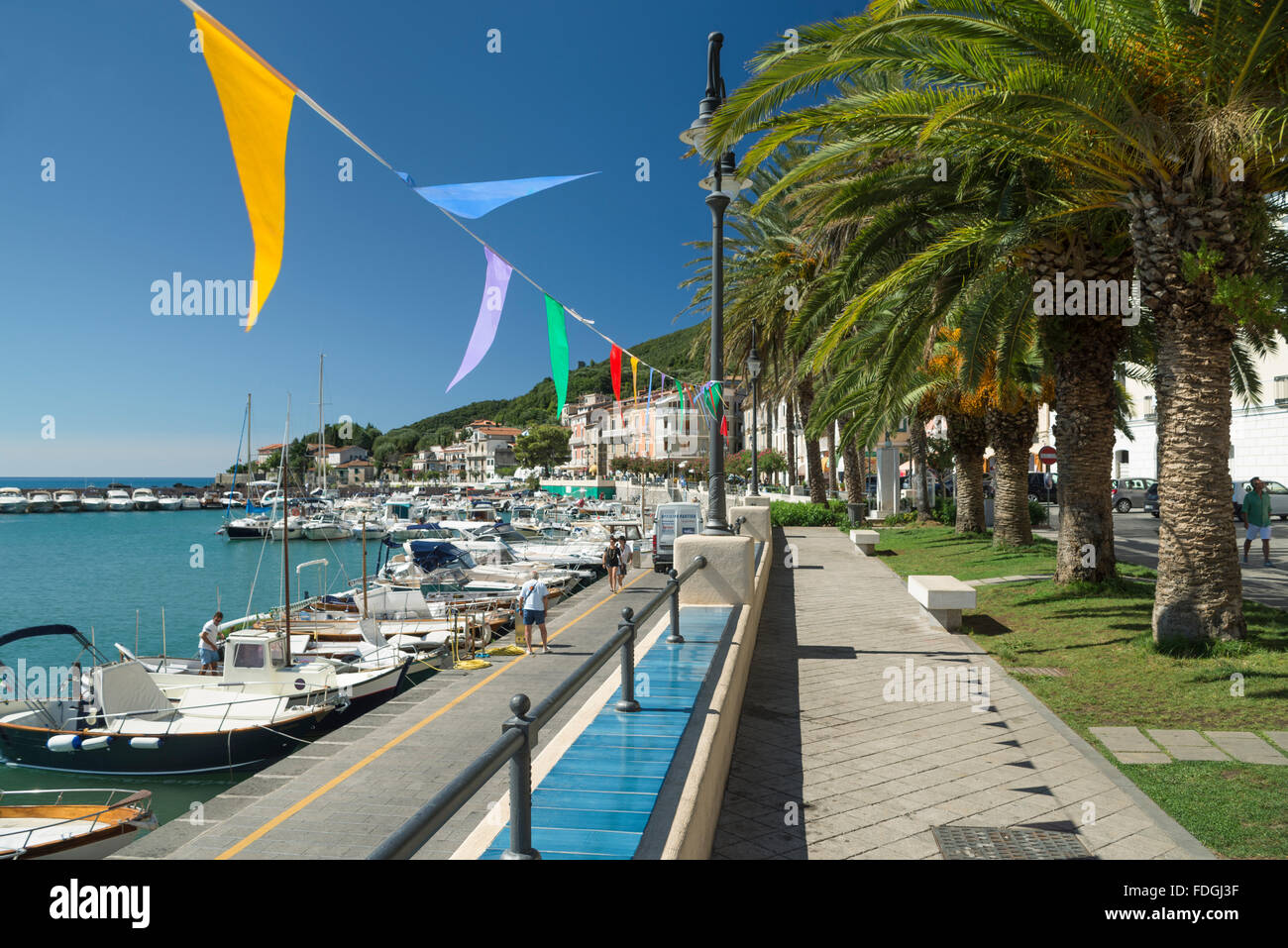 Colorful pennants and palm trees on the harbor promenade in picturesque town of Scario on the coast of Cilento, - Stock Image