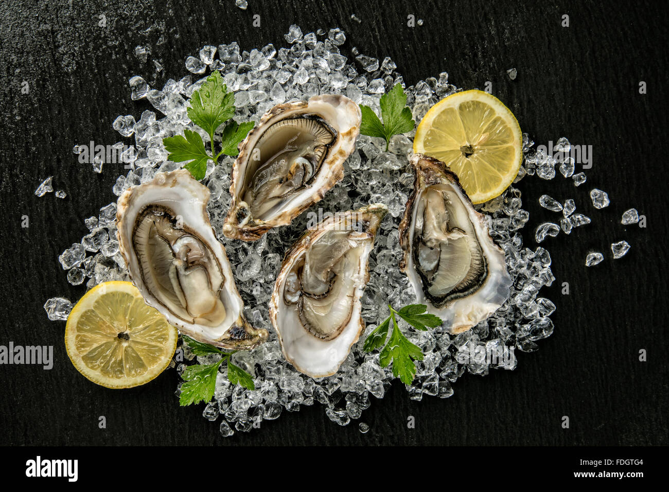 Oysters served on stone plate with ice drift - Stock Image