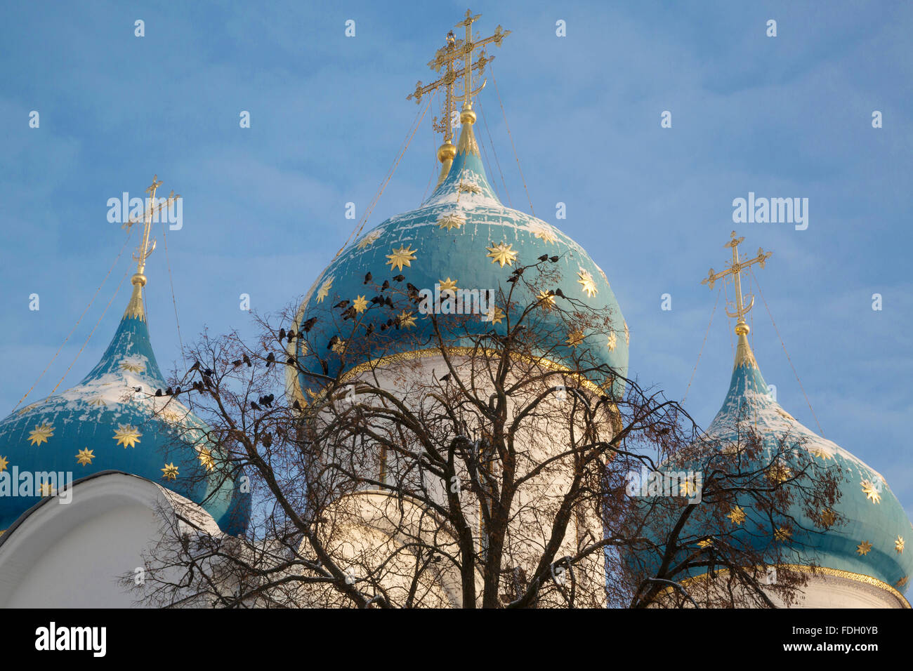 Closeup vier of Church Domes in Trinity Sergius Lavra in Sergiev Posad town as part of The Golden Ring's group - Stock Image