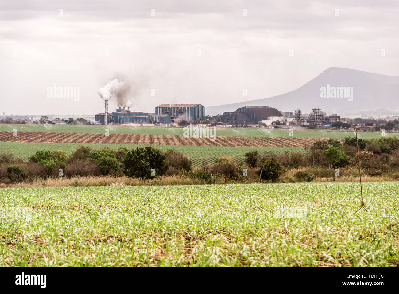 Sugar Refinery in Lubombo, Swaziland, Africa. - Stock Image