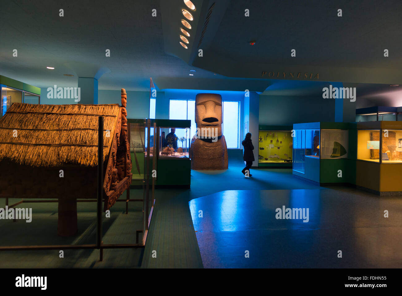 Margaret Mead Hall of Pacific Peoples at the American Museum of Natural History in New York - Stock Image