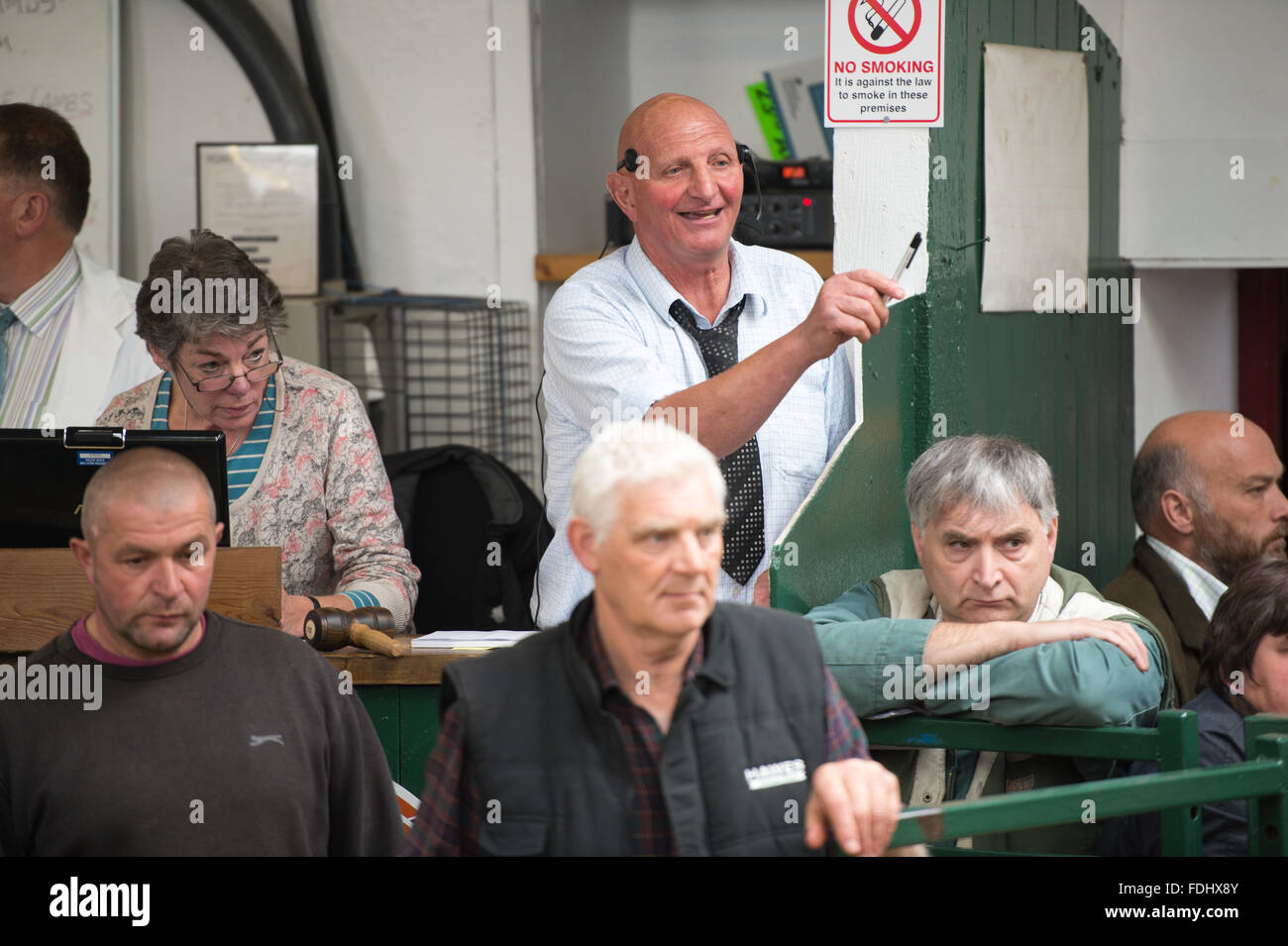 Auctioneer at a Hawes Sheep Auction in Yorkshire, England, UK. - Stock Image