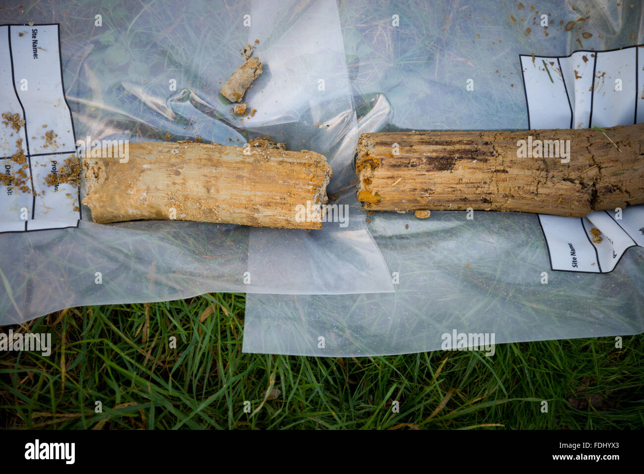 Soil core taken from the ground. Used to determine the soil and rock quality for building purposes. Soil report - Stock Image