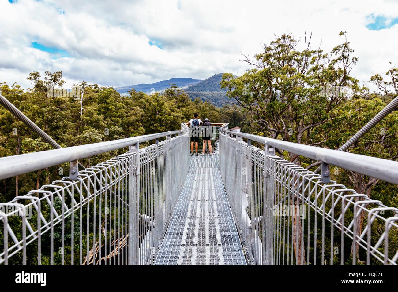 low priced f8eeb e7964 Tahune Airwalk, Geevestone, Huon Valley, Tasmania, Australia - Stock Image