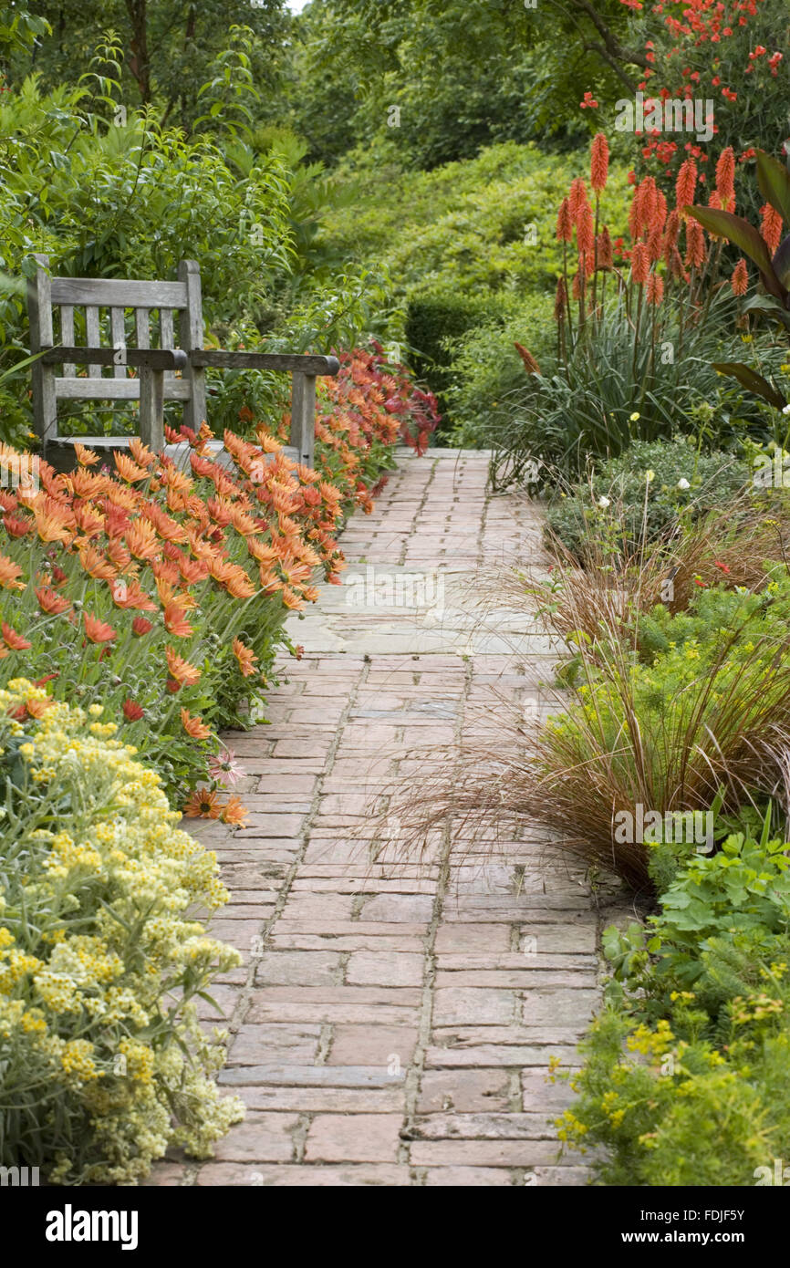Path And Bench In The Cottage Garden With Arctotis X Hybrida