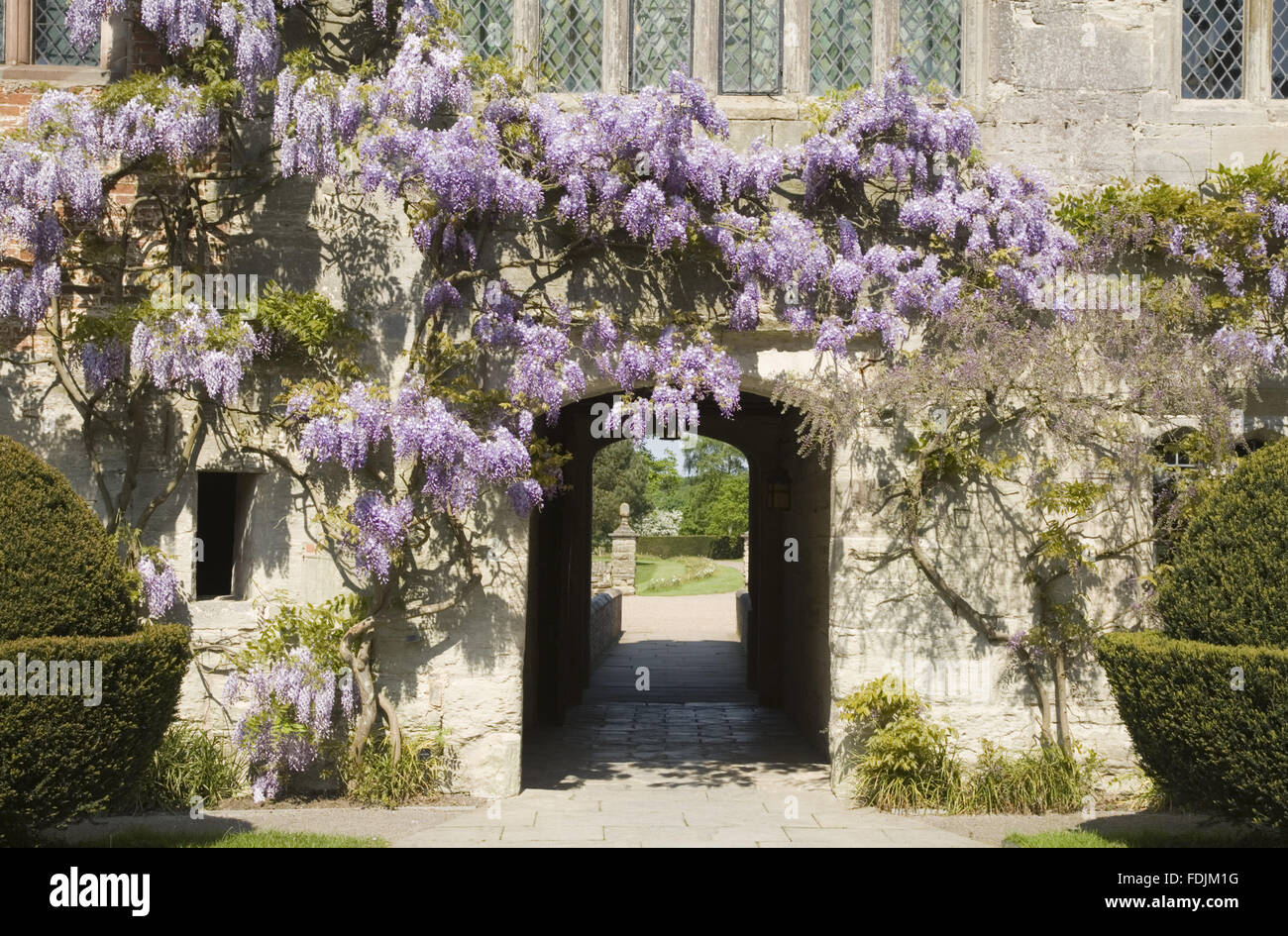 The fifteenth-century Courtyard range of Baddesley Clinton, West Midlands with a pretty wisteria framing the arched - Stock Image