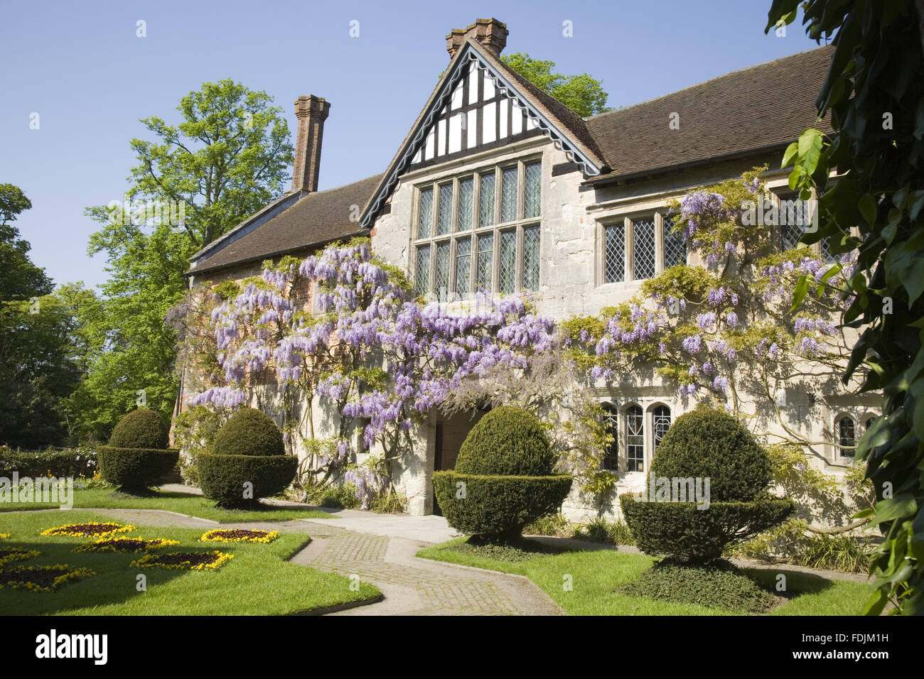The fifteenth-century Courtyard range of Baddesley Clinton, West Midlands with a pretty wisteria climbing the timbered - Stock Image