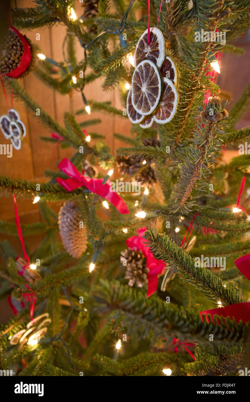 Traditional Victorian Christmas Decorations Made Of Preserved Orange Stock Photo Alamy