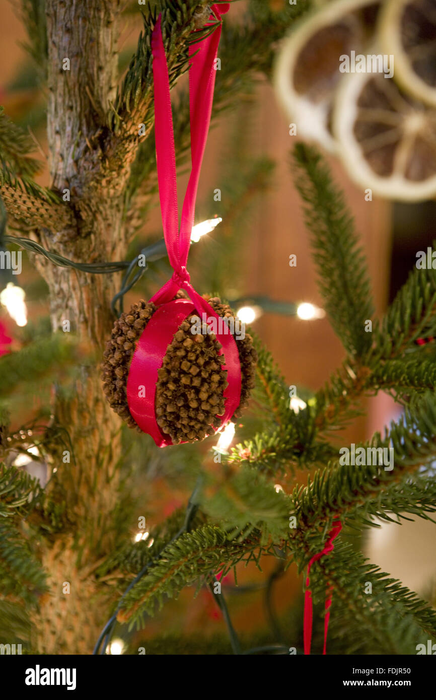 traditional victorian christmas decorations made of orange and cloves on the tree at standen west sussex